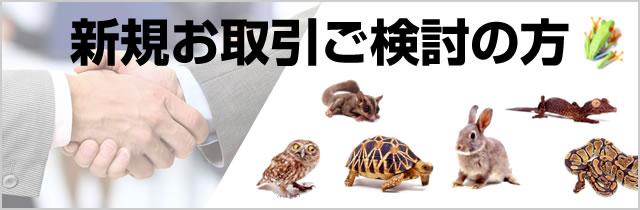 bnr_shinki